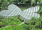 Proximos eventos en bogota julio 2010 for Actividades jardin botanico bogota
