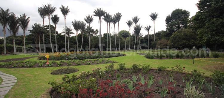Jardin Botanico - 22 Lugares para ir en Bogota